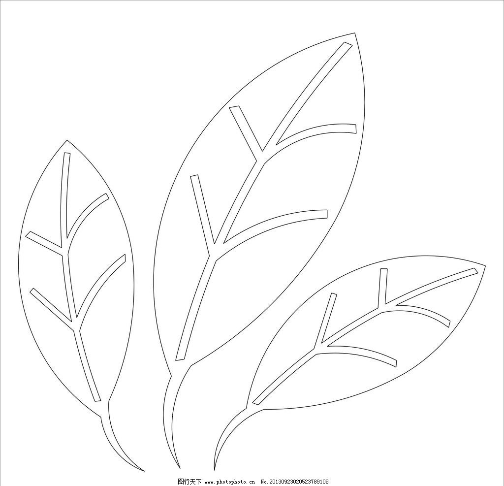 树叶 白描 矢量 线条 插画 条纹线条 底纹边框 cdr图片