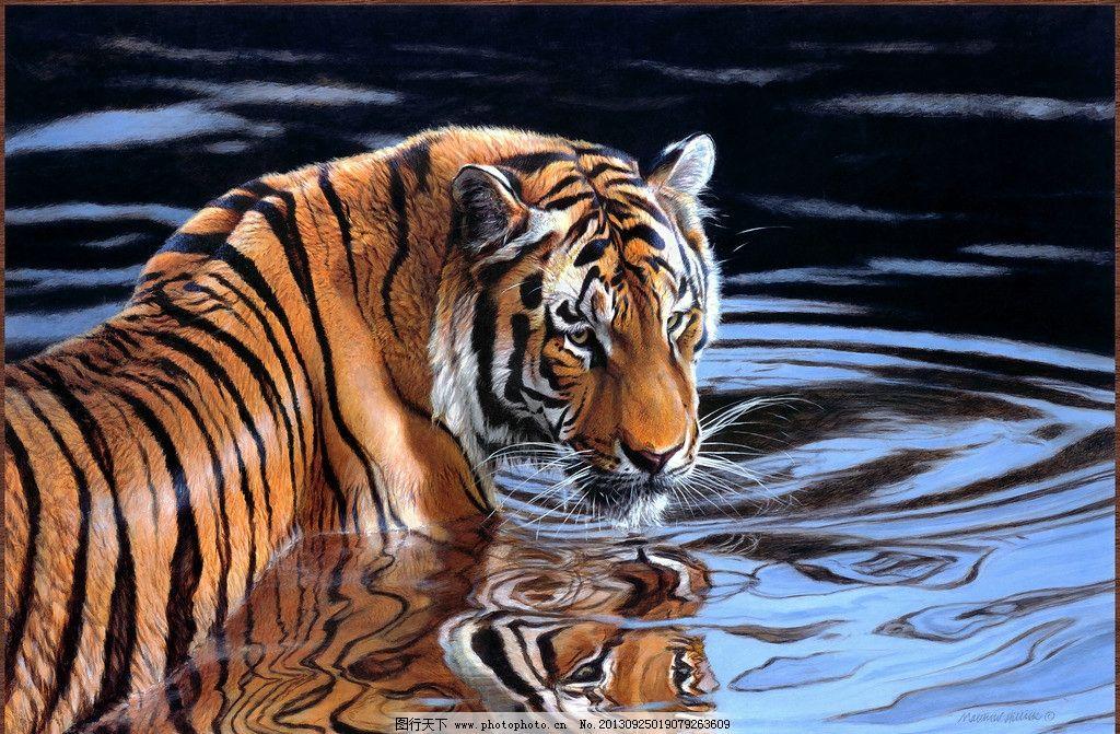 动物油画 动物 老虎 东北虎 老虎戏水 白虎 绘画书法 文化艺术 设计