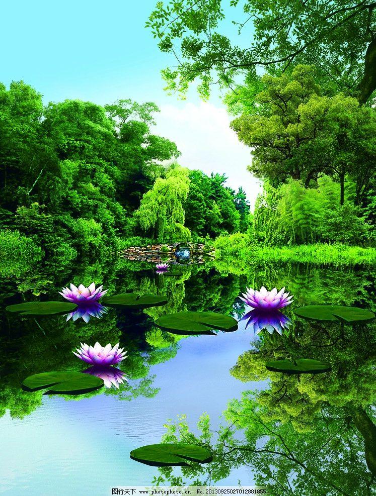 荷花风景 小河 莲花 树叶 树木 花草 生物世界图片