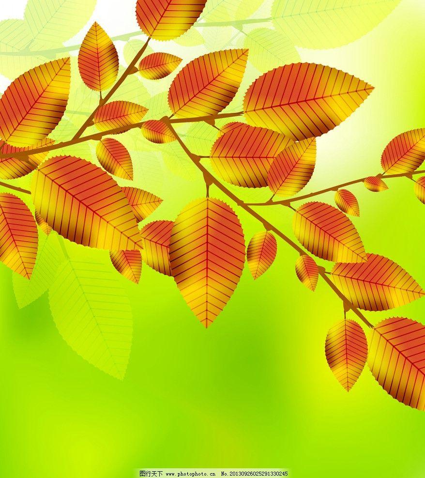 树叶 风景 自然 秋天 秋季 树叶背景 秋天背景 金黄 叶子 设计 黄色