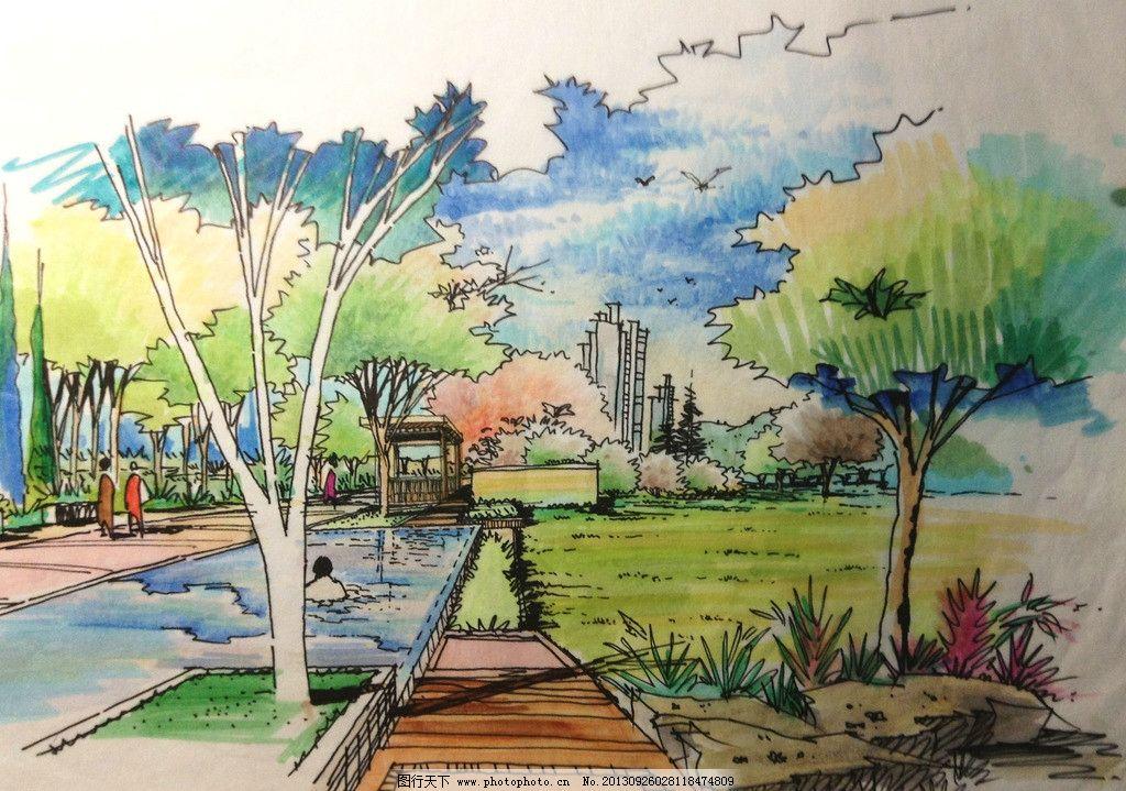 小区景观设计手绘效果 泳池效果图 草坪