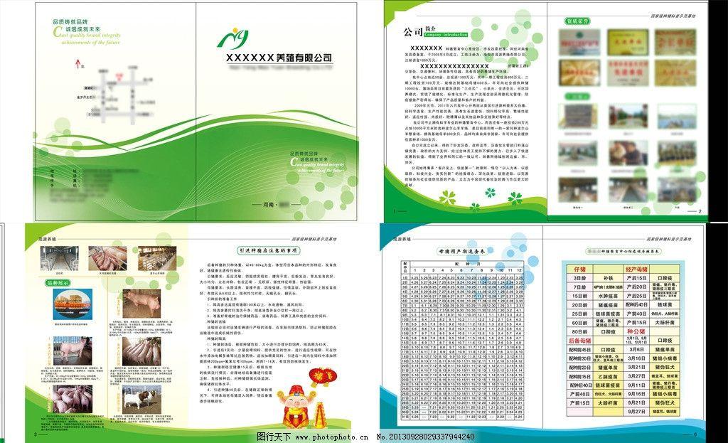 养殖猪 种猪 画册 养殖场 品种 画册设计 广告设计 矢量 ai