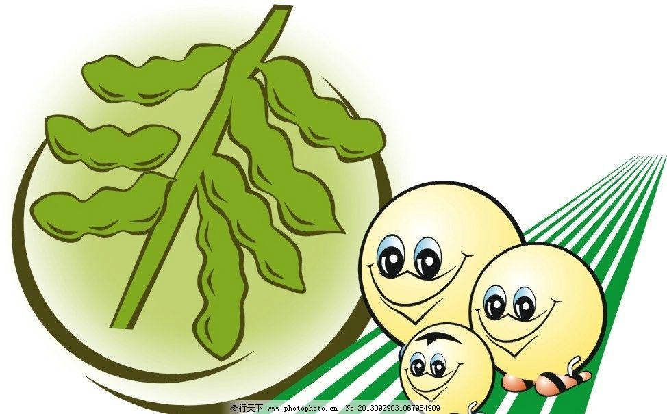 豆子生长过程简笔画