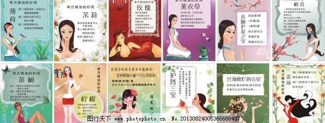 精油小贴士图片免费下载,CDR,广告设计,红花,蝴蝶,花边框,梅花